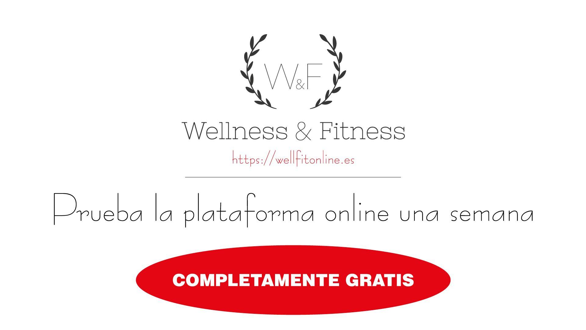 Plataforma-gratis